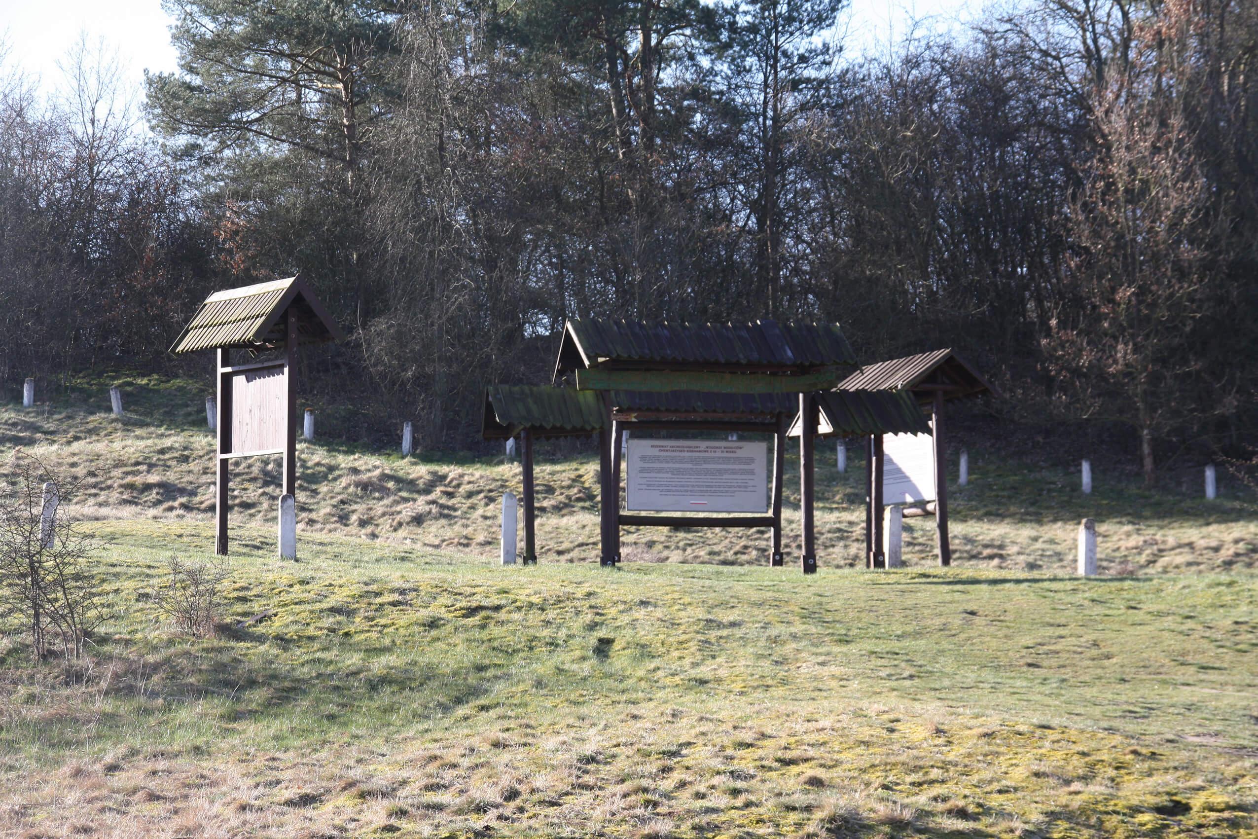 """Rezerwat Archeologiczny """"Wzgórze Wisielców"""" Cmentarzysko Kurhanowe z IX-XI w."""